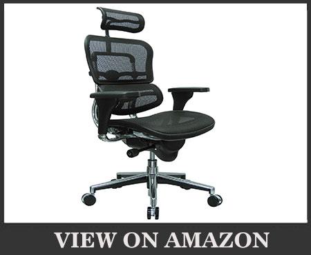 Ergohuman High Back Swivel Chair