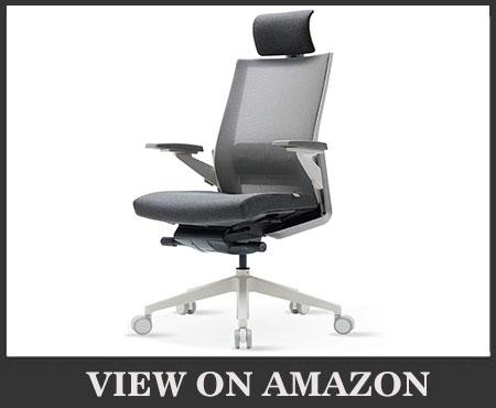SIDIZ T80 Highly Adjustable Ergonomic Office Chair