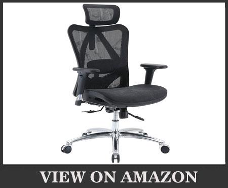Sihoo Ergonomic High Back Office Chair