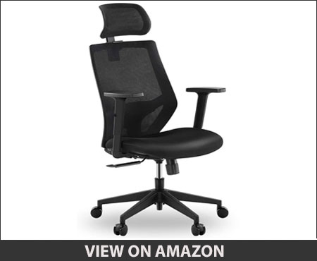 Tribesigns Ergonomic Office Chair