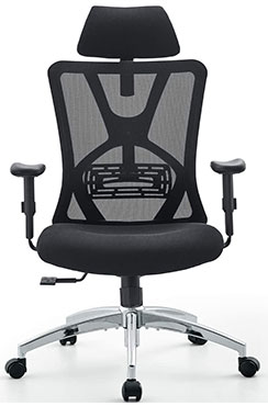 Ticova Ergonomic High Back Office Chair